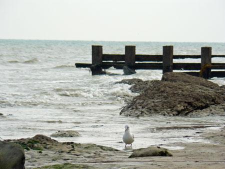 2010-09-04_6089web